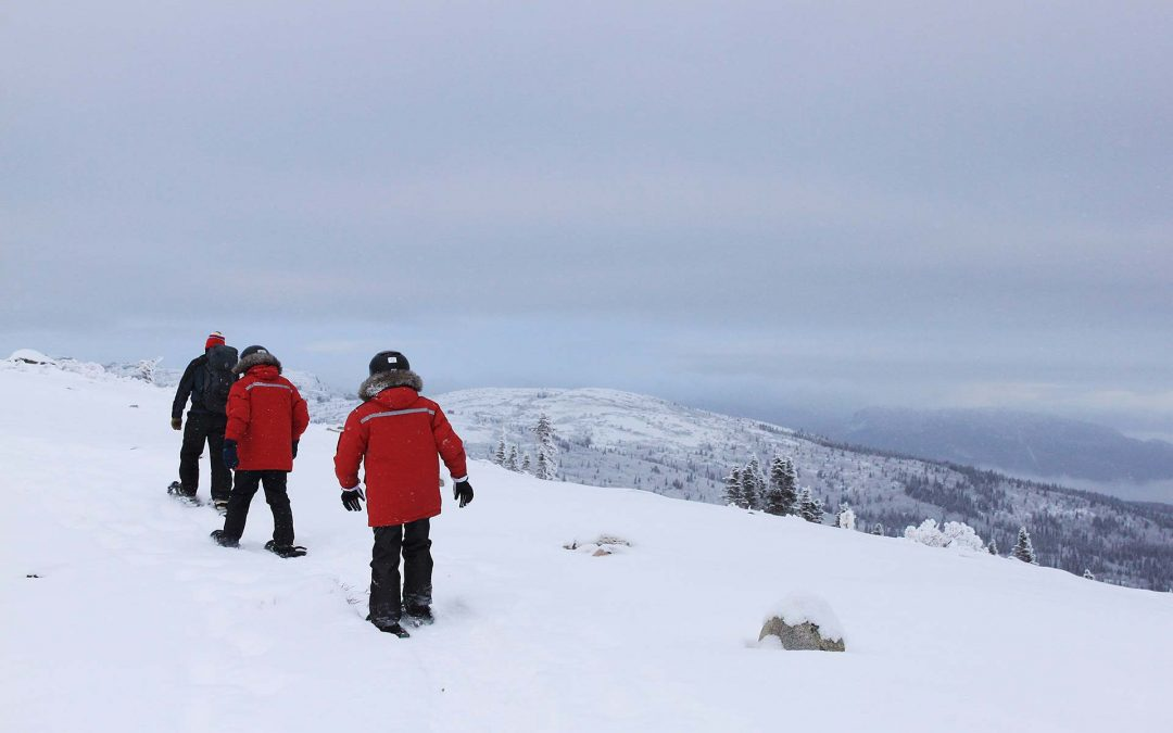 Guided Snowshoeing Tours